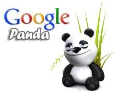 googlepanda11